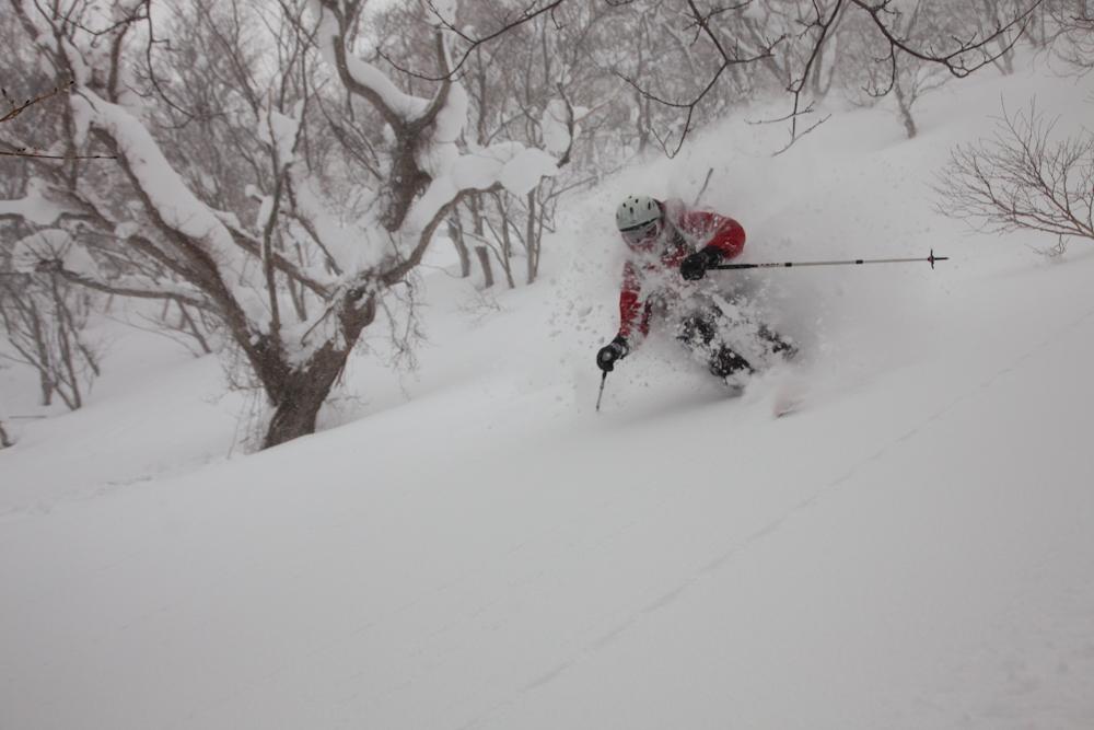 Ingo deep in the birch trees on Hokkaido, Japan